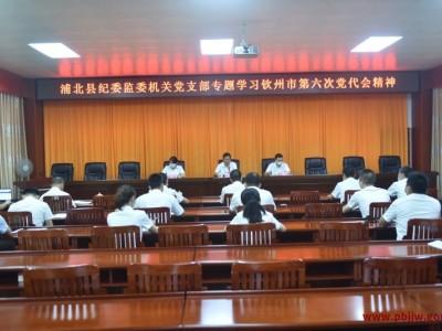 浦北县纪委监委机关党支部专题学习钦州市第六次党代会精神